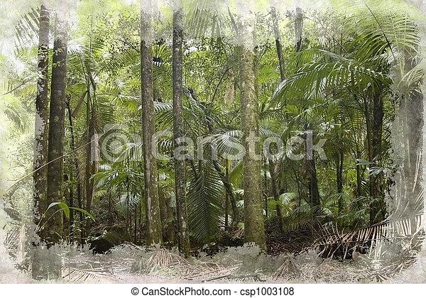 Bosque de lluvia - csp1003108