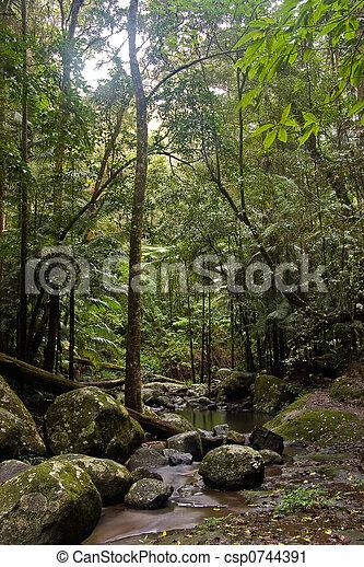 Bosque lluvioso - csp0744391
