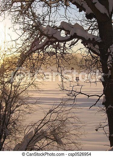 Un paisaje de invierno - csp0526954