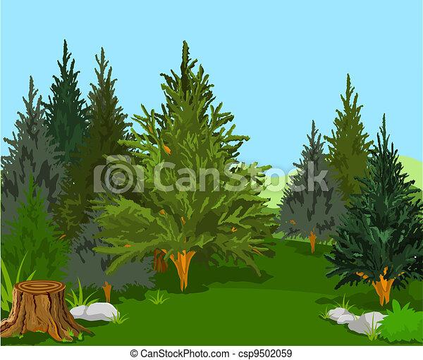 Un paisaje forestal - csp9502059